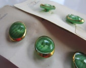Vintage Buttons,  1950's Buttons by Schwanda, Germany, 2 cards, 6 buttons stripe oblong glass, green (jan 145 b)
