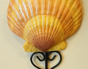 Shell / Clam Curtain Holder Coat Hook Beach Decor Nautical Home Design