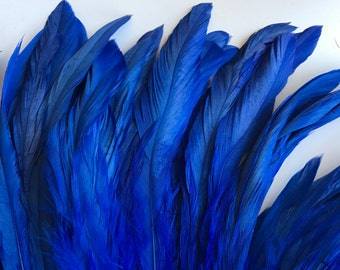 RUSTICA COQUE FEATHERS  /  Royal Blue  /  1315