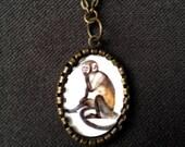 Bashful Monkey necklace