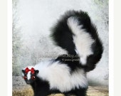 """Labor Day SALE 5x7 Premium Art Print """"Ms. Skunk on Her Own"""" Small Size Giclee Print of Original Artwork - Black and White Lady Skunk in the"""