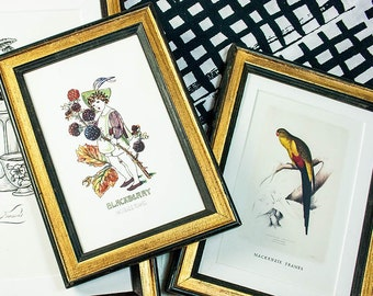 Wide Black And Gold Frame With Oval Mat For By Mackenzieframes