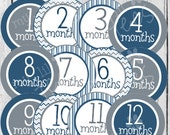 MONTHLY IRON ON Decals or Monthly stickers - 12 Monthly iron on heat transfers - for Baby - Blue & Grey Monthly Pack (Style#B05)
