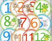 MONTHLY IRON ONS Decals or Monthly Stickers - 12 Monthly iron on heat transfer - Lil' Critters - baby animals