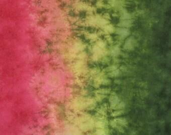 Hand Dyed Fabric - Coleus -  Gradient