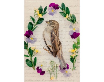 The Funeral - Bird Photography Flowers Death Wreath Victorian Typography Dead Bird Sparrow Fine Art Home Decor Conceptual Dark Still Life