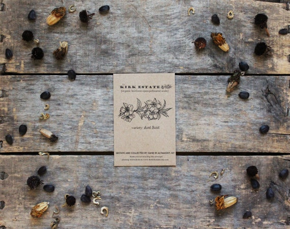 Any 5 Organic Heirloom Seed Packets // gardener gift // from our farm // eco friendly // vegetable flower + herb seed