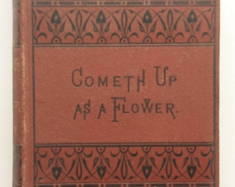 1872 Cometh Up As Flower