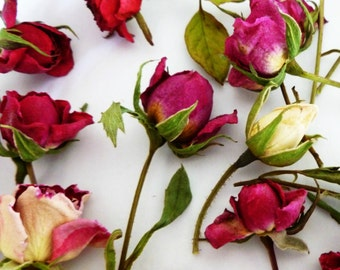 50 Dried Rosebuds, Table Decor, Pink Roses,  Rosebuds,  Miniature Rose, Red, Wedding Decorations, Resin Jewelry, Craft Supply, Dry Flowers