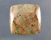 Petrified Colla  Wood Designer Cabochon (Turkey)