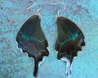 Real Butterfly Wing Earrings, Peacock Metallic, Bohemian Earrings, Boho Gypsy, Large Butterfly Earrings BW002