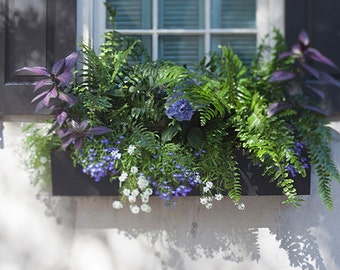 Window Photography - Charleston SC Print - Flower Window Box - Travel Picture - Affordable Home Decor - Garden Art - Lowcountry Architecture