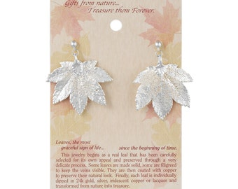 Real Full Moon Maple Leaf Silver Post Dangle Earrings - Real Dipped Leaves - On Card