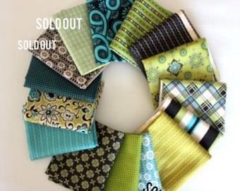 SuperBowl Sale Ansonia from Denyse Schmidt, Mossy Color way FQ bundle, 12 fabrics total