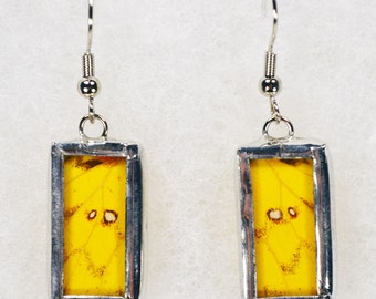 Real Butterfly Earrings - Phoebis Argante - Glass and Lead Free Solder
