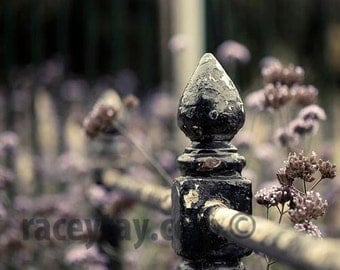 Paris Decor, Purple, Black, Gray, Nature Photography, Old Fence, Rustic, Neutral, Paris Print