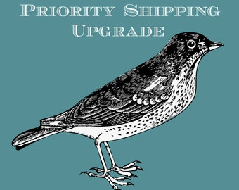 USPS Priority Mail Small Flat Rate Box Upgrade for Marlowe Cherry