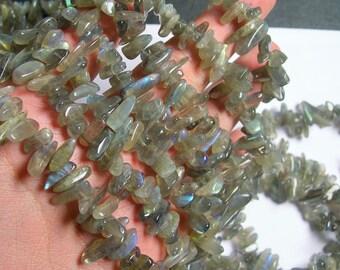 Labradorite gemstone - stick - point - chip stone  bead - 16 inch -full strand - PSC245