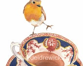 Bird Watercolour Painting - Fine Art PRINT, English Robin, Tea Cup, Kitchen Art, Bird Lover Gift