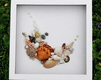 Beach Nautical Seaside Seashells Sea Shells Art Collage Small Shadowbox Framed Art Romantic Cottage Coastal Natural Home Decor