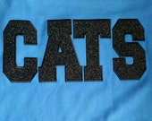 CATS Spirit Jersey
