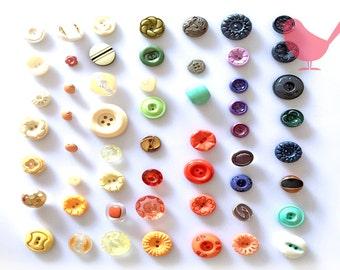 Vintage Button 3 - over 50 pieces