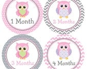 Baby Month Stickers Pink Owl Monthly Belly Labels from 1 to 12 Months in Pink and Grey Chevron and Gray Polka Dots for Baby Girl for Photos