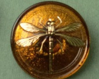 Czech Glass Button - Dragonfly in Amber Button - Large 31mm - Outlander