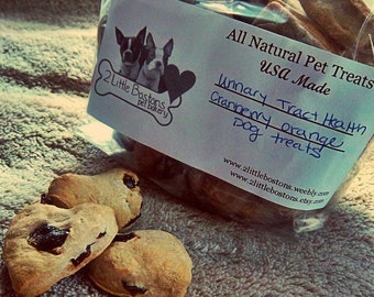Healthy Benefits - Cranberry Orange Dog Treats - Urinary Tract Health - All Natural Dog Treats - 30 count