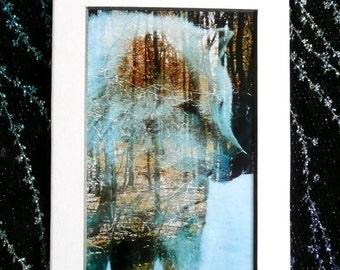 Wolf totem, wolf art photo , animal art,Native American art , Indian art, Eli Thomas Art , nature art gift, home decor , Blue winter