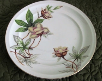 2 Vintage Meito China Porcelain China Dinner Plates Woodrose Pattern