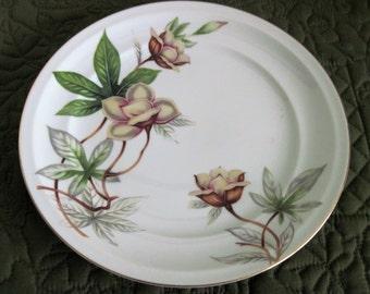 2 Vintage Meito China Porcelain China Dinner Plates Woodrose Pattern