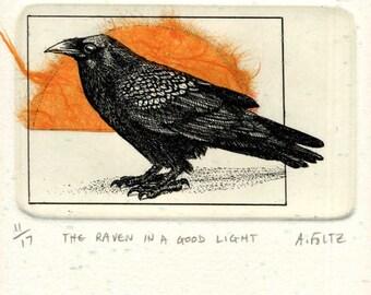 Raven in a Good Light