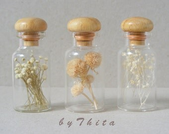 set of 3  real dried flowers  in glass bottles