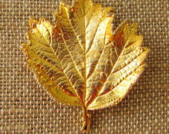 vintage 70s real maple leaf dipped in gold 24 kt pin brooch  usa