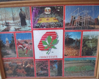 Vintage The Ohio State University puzzle  scenes Brutus The Oval Script Ohio framed under glass puzzle