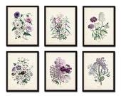 Les Fleurs Print Set No. 7 - Botanical Prints - Giclee Canvas Art Print - Antique Botanical Prints - Posters - Botanical Print Set