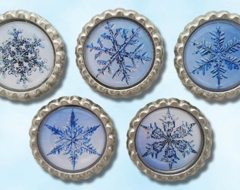 Snowflakes, frozen, winter bottle cap magnets