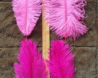 Lot of Small Pinks Ostrich Plumes