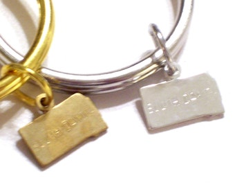 SOUTH DAKOTA Keychain, Silver S Dakota State Charm Keychain, Gold S Dakota Key Ring, Silver State Keychain, South Dakota Charm