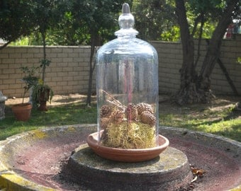 Large Vintage Glass Garden Cloche with Pottery Stand ~ Fill with your Favorite Garden Things