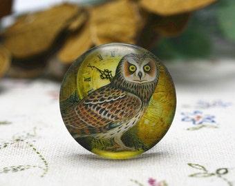 4pcs 25mm Round Handmade Photo Glass Cabochon - Owl