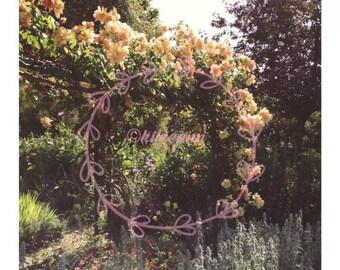 Floral Euphoria
