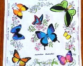 Australian Birds and Australian Butterflies Colorful Cotton Hankies
