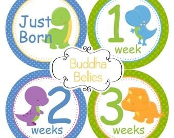 Newborn and Months 1-12 Sets - Dinosaur Baby Boy - TRex Baby - Baby Monthly Stickers - Baby Month Stickers - Dinosaur Baby Shower Gift