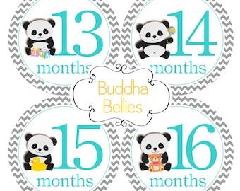 Panda Baby Second Year Set - Months 13-24 - Gender Neutral Baby Monthly Stickers - Month Baby Stickers - Baby Decals - First Birthday Gift