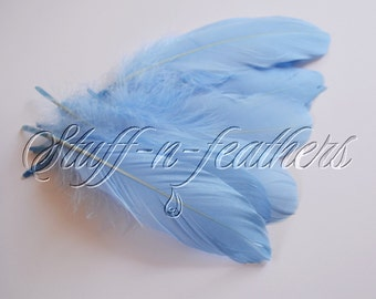 Baby BLUE GOOSE pallets feathers, loose light blue feathers for millinery, crafts, decoration, real feather 5-8in (12.5-20cm), 12 pcs / F195