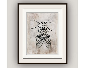 Leopard Moth Minimalist Nature Fine Art Photography Print, Woodland Rustic Zen Neutral Colors, Black White Taupe Gray Beige Greige