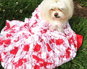 Custom made Zombie dress complete with crinoline type underskirt for fullness! Awesome Dog Costume!