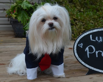 Presidential looking Business Suit for your Dog! Navy Blue Suit with Red tie